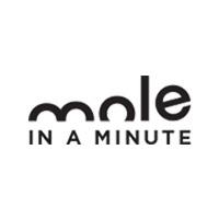 Mole Minute